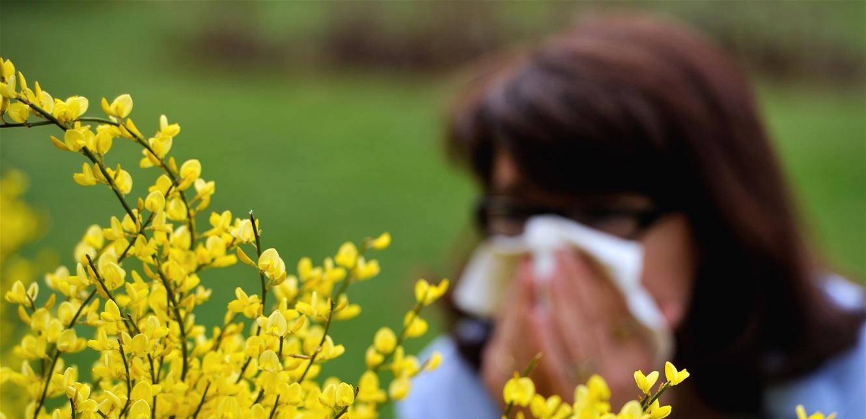 """تنبيه.. هكذا تفرّق بين أعراض """"حساسية الربيع"""" وكورونا"""